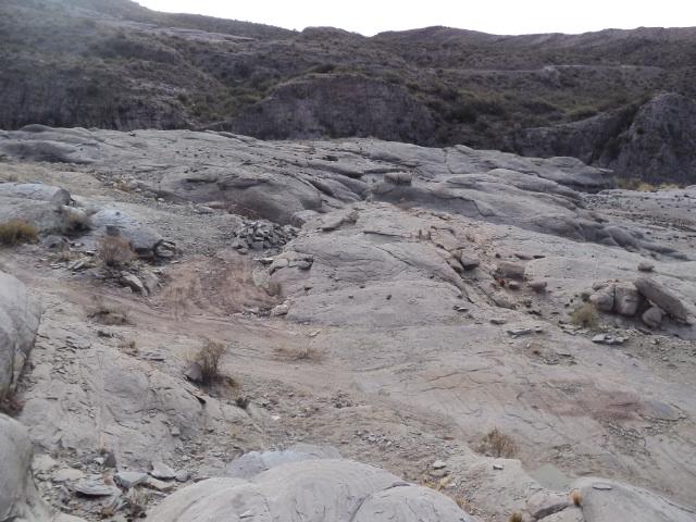 Piedras peladas Dsc00712