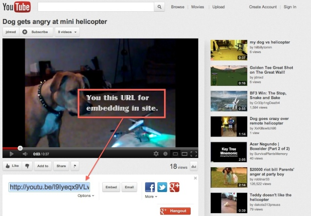 Please read. How to embed youtube videos to site. Url_to10