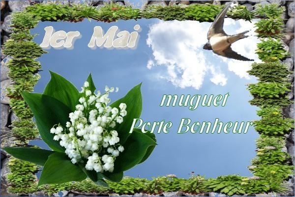 premier mai Muguet10