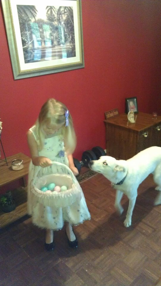 Chase loves egg hunts! 48024510
