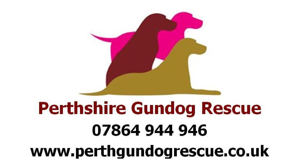 Perthshire Gundog Rescue