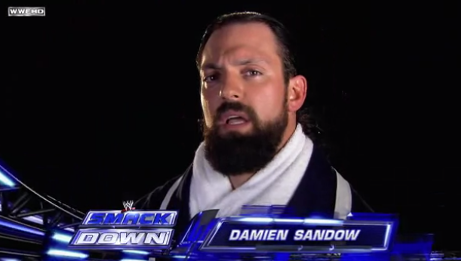 Damien Sandow Segmen88