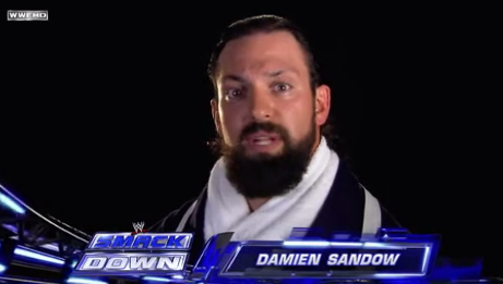 Damien Sandow Segmen89