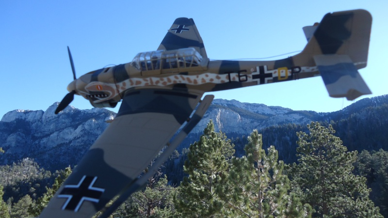 Mes avions en vol..... Dsc02925