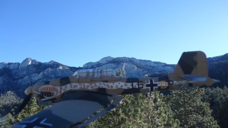 Mes avions en vol..... Dsc02926