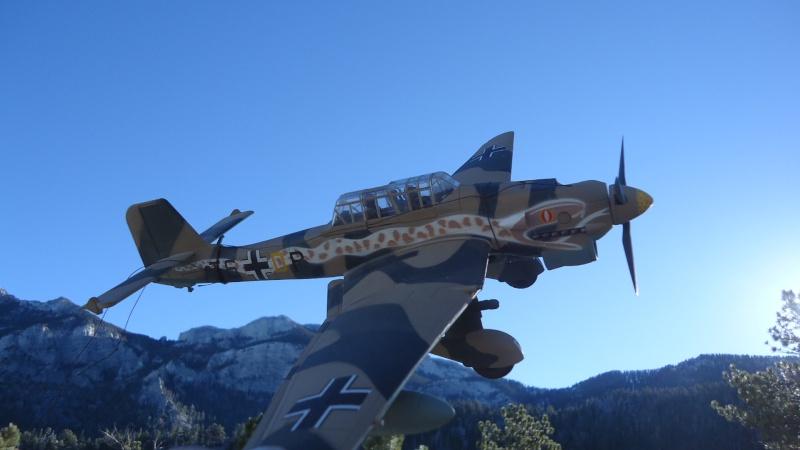 Mes avions en vol..... Dsc02927