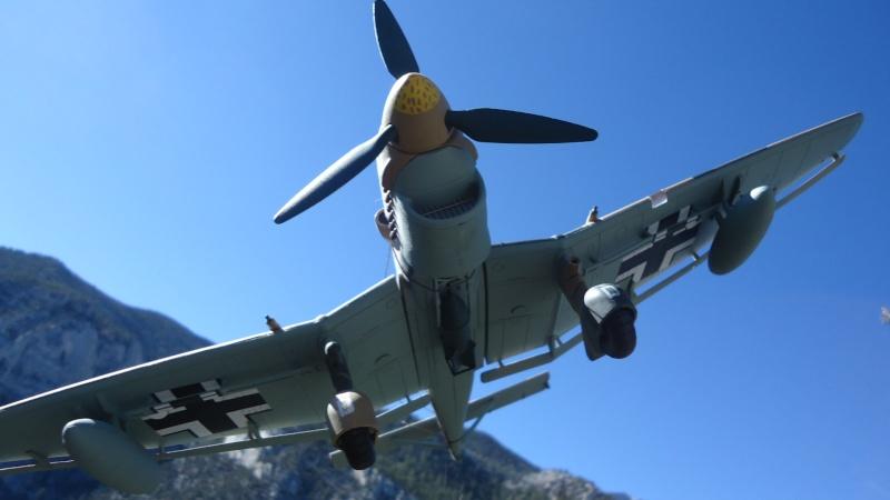Mes avions en vol..... Dsc02931