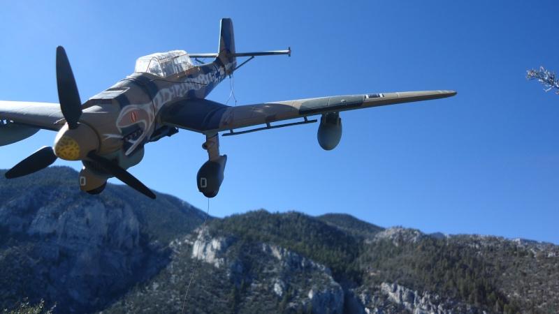 Mes avions en vol..... Dsc02932