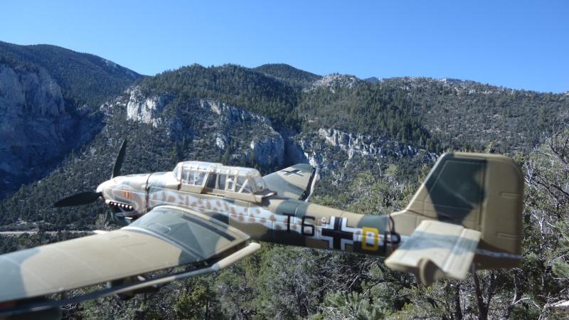 Mes avions en vol..... Dsc02934