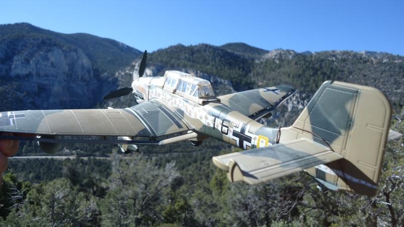 Mes avions en vol..... Dsc02935