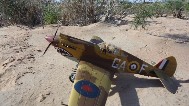 Mes avions en vol..... Dsc02964