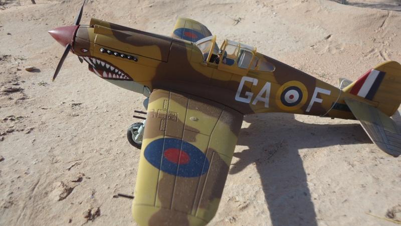 Mes avions en vol..... Dsc02965