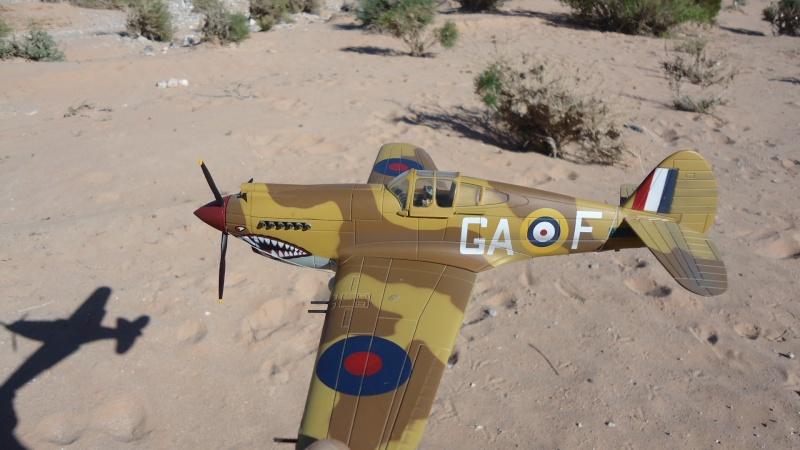 Mes avions en vol..... Dsc02966