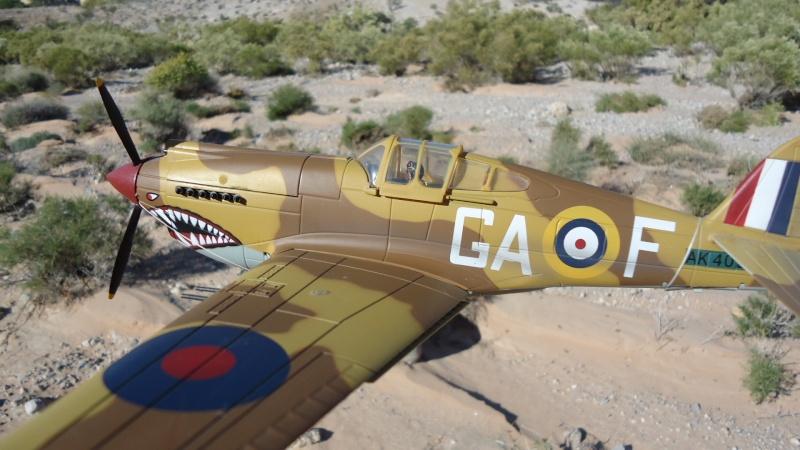 Mes avions en vol..... Dsc02967