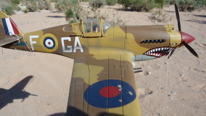 Mes avions en vol..... Dsc02968