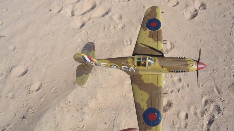 Mes avions en vol..... Dsc02969