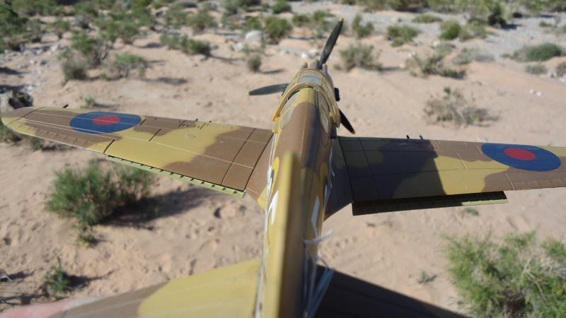 Mes avions en vol..... Dsc02971