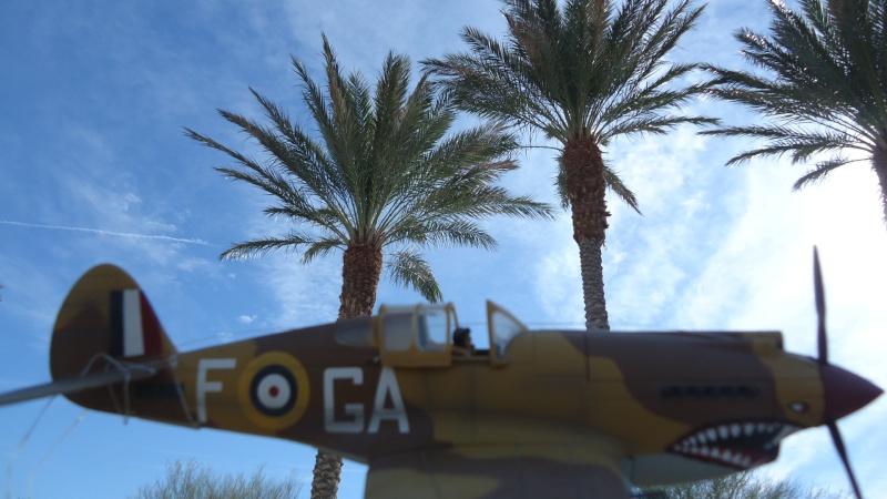 Mes avions en vol..... Dsc02973