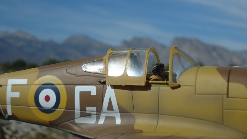 Mes avions en vol..... Dsc02974
