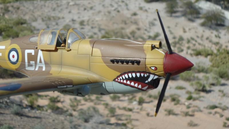 Mes avions en vol..... Dsc02976