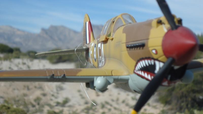 Mes avions en vol..... Dsc02977