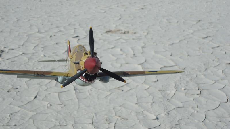 Mes avions en vol..... Dsc02979