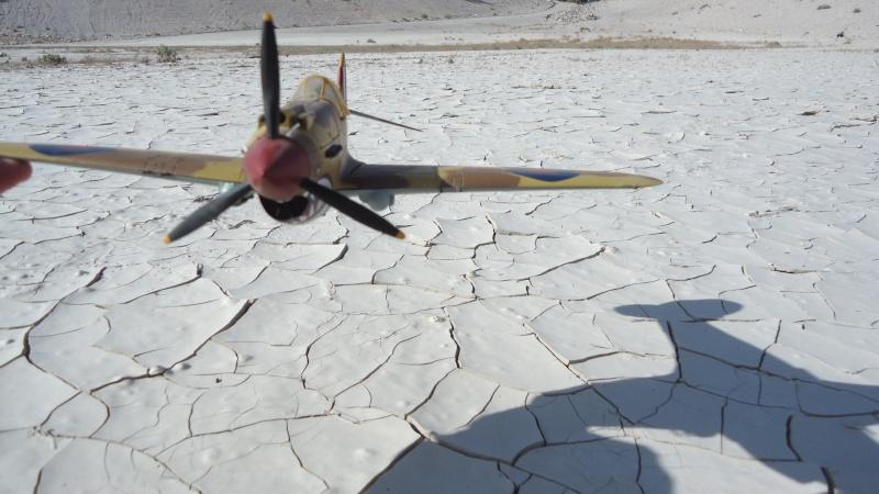 Mes avions en vol..... Dsc02980