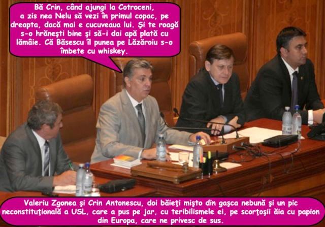 Nemulțumiți de Clasa Politică Bula_v11