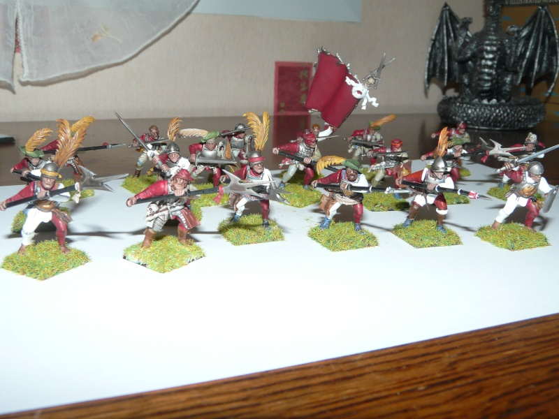 bataillon de l'empire (warhammer) P1030210