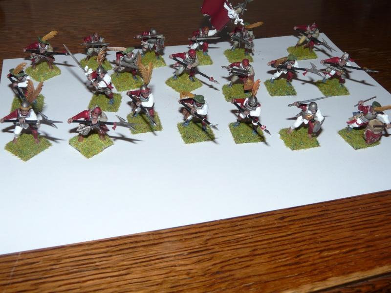 bataillon de l'empire (warhammer) P1030211