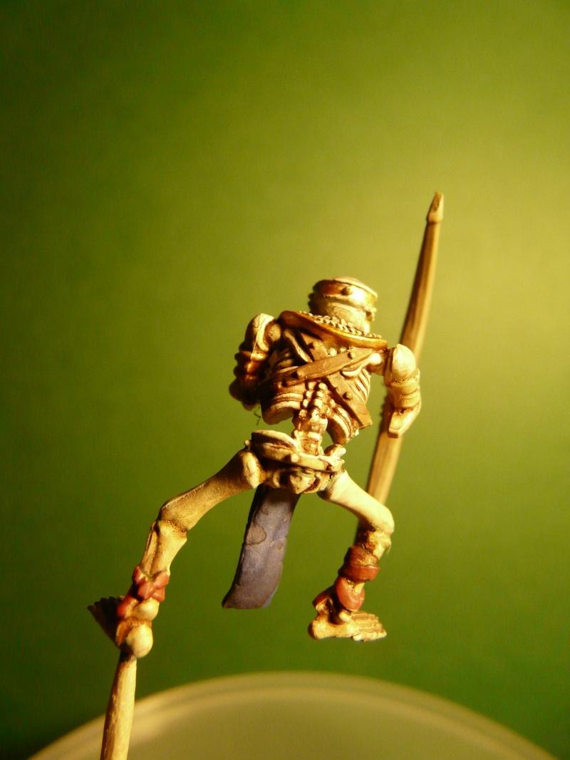 Chars Squelettes P1030526