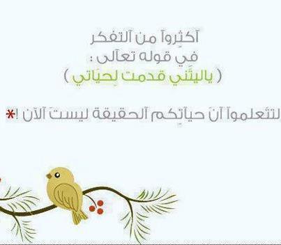 اقوال وحكم بالصور  42919110