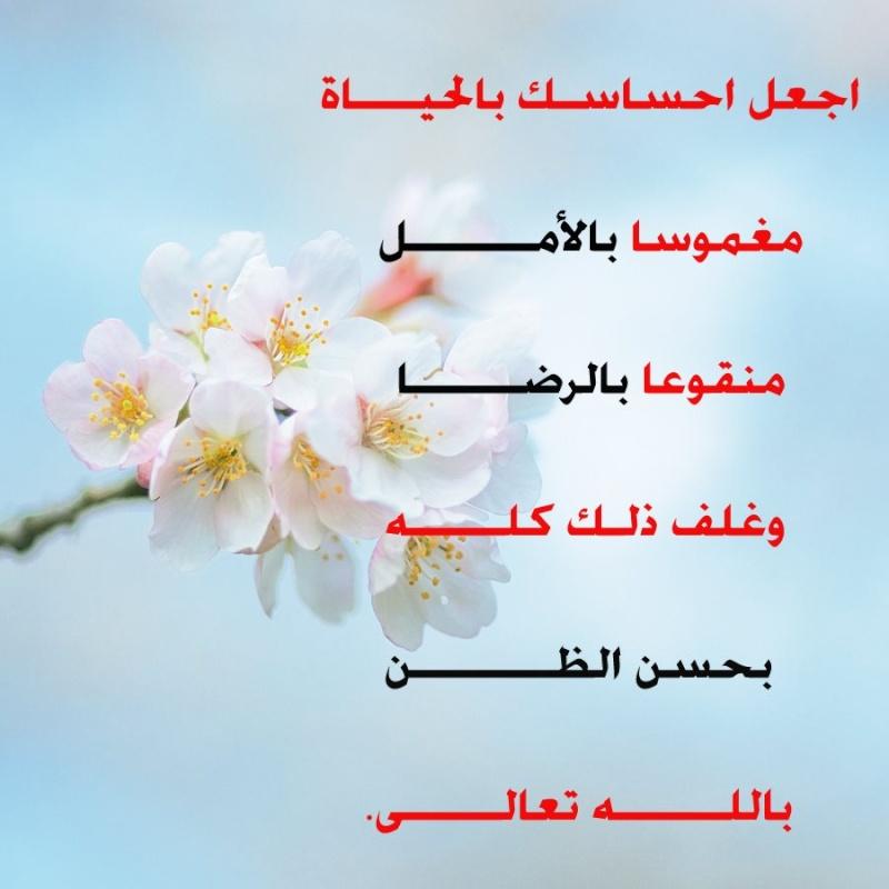 اقوال وحكم بالصور  52356910