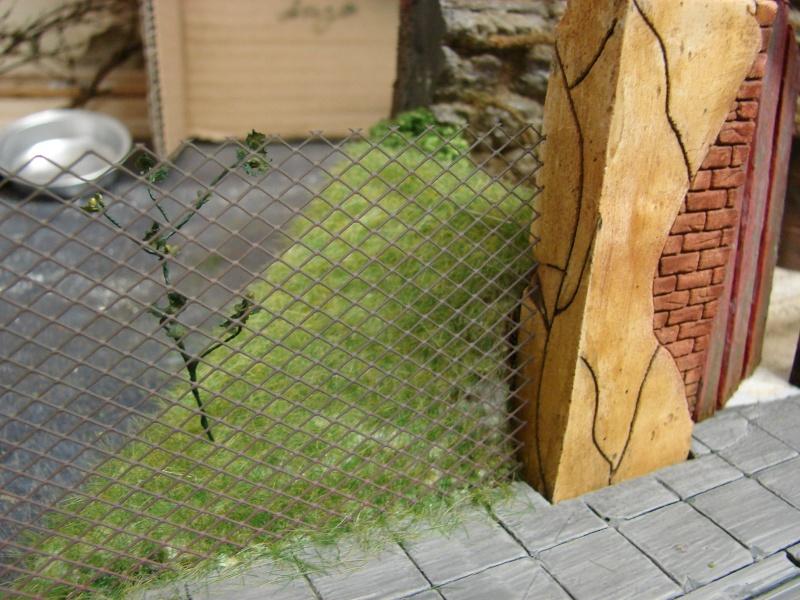 Alter verlassener Vorgarten mit großer Stützmauer Dsc04612