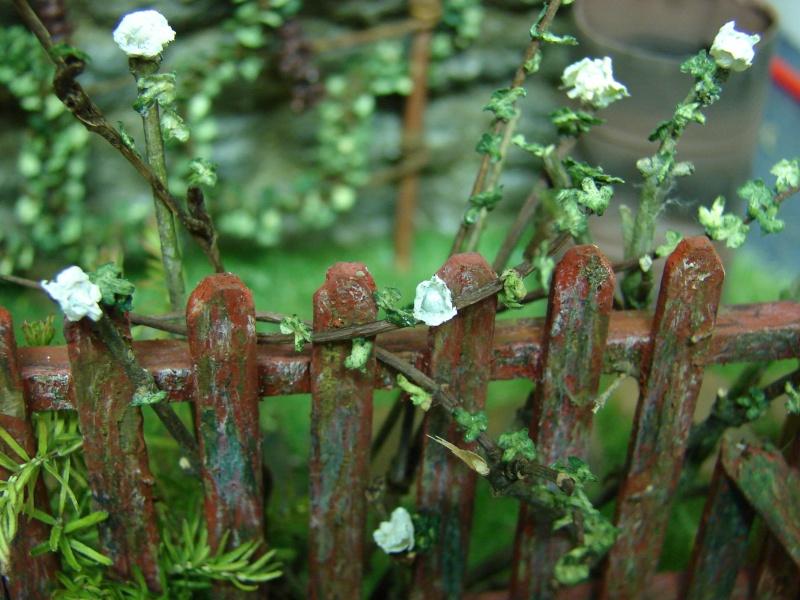 Alter verlassener Vorgarten mit großer Stützmauer - Seite 3 Dsc04815