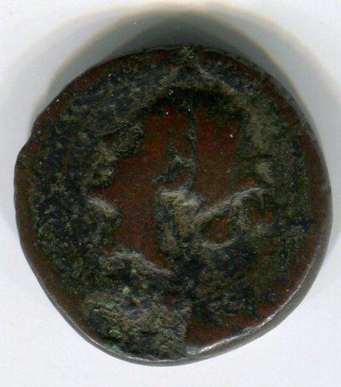 monnaie grecque  Foto2910