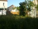 paysagiste pour jardin P1040110