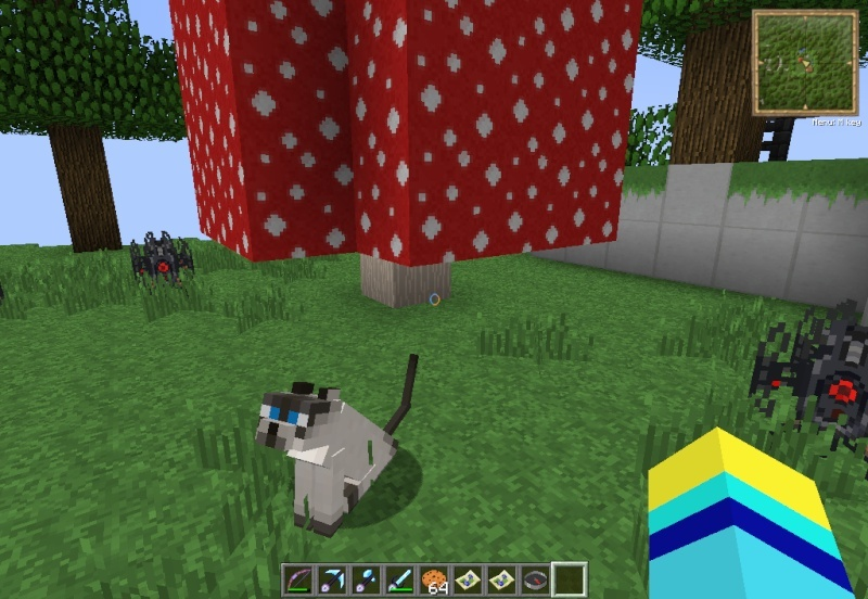 What is your favorite type of Cat in Minecraft? 2012-010