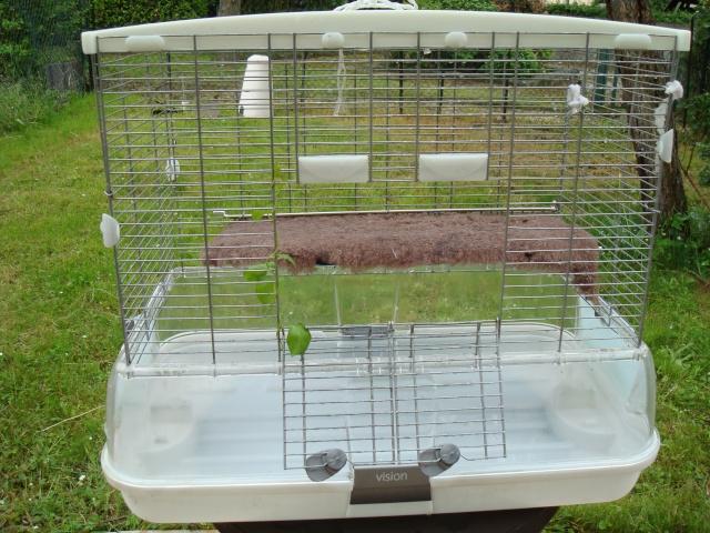Vends cage Hagen avec accessoires Dsc02510
