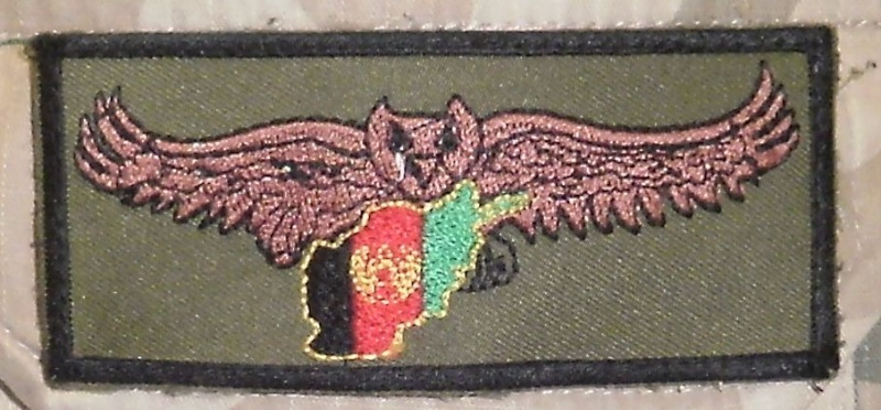 French qualification patches for ANA Officers Ana_ow10