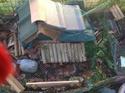 EMMIA maison de rongeur transformée en cabanne a tortue hiver comme été... Img_0512