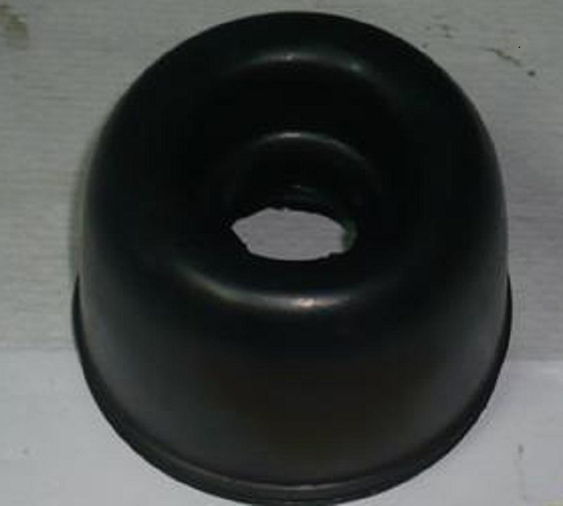 recherche de protection soufflet  P1130510