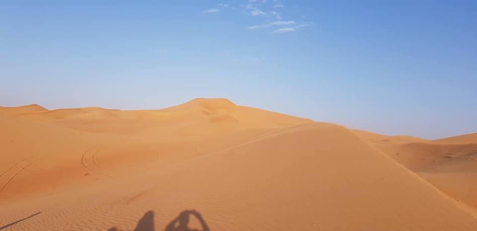 Petite balade à Abu Dhabi 46429710