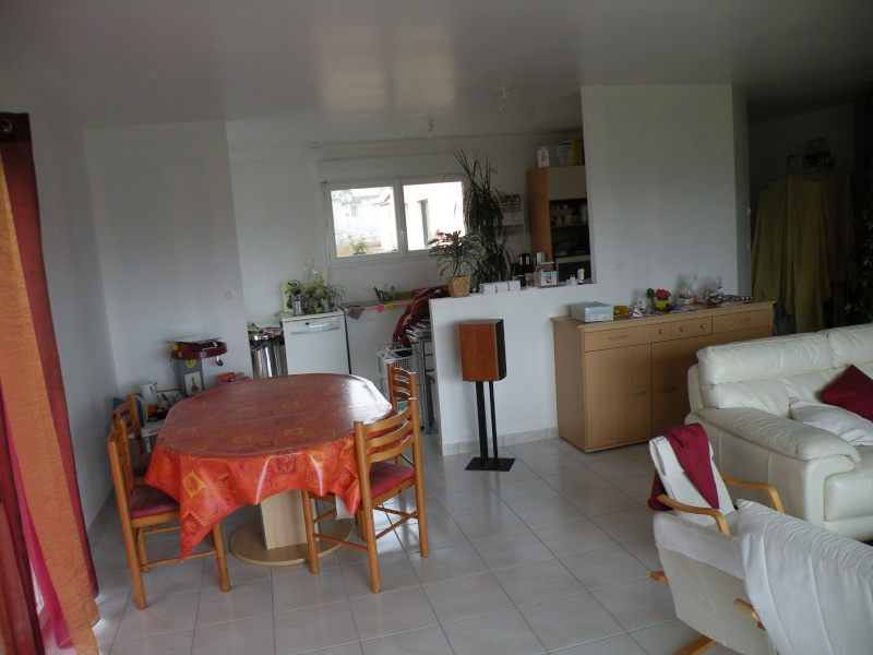 Amenagement de la salle salon cuisine Dscn7512