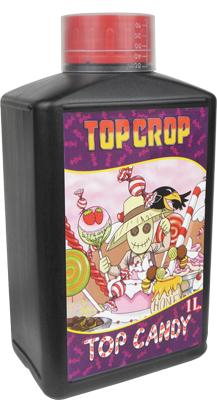 TOP CROP Top_ca10