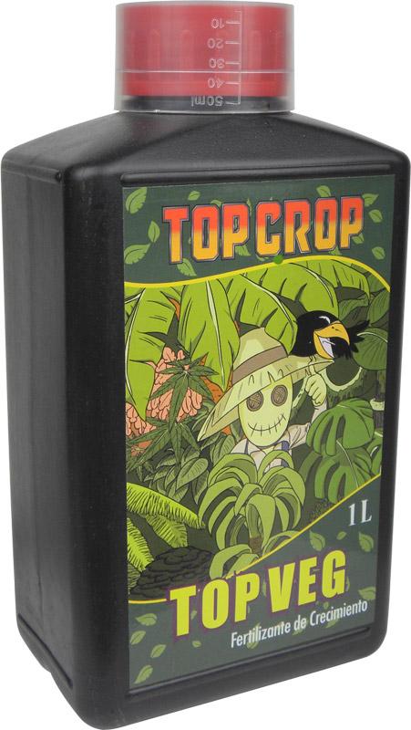 TOP CROP Top_ve10
