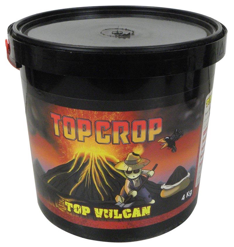 TOP CROP Top_vu10