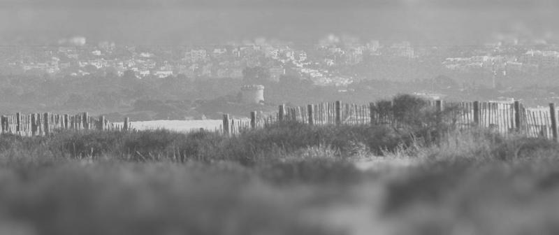 paysage corse Image811