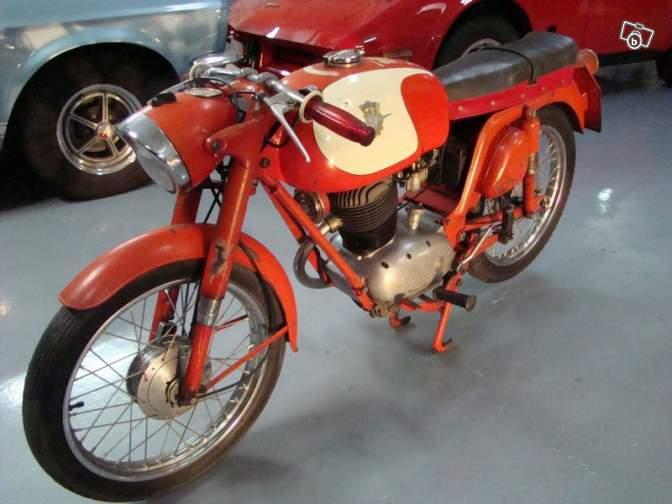 Cyclo sport 77220311