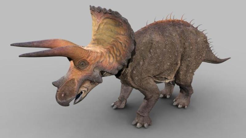 James' Dinosaurs Dr210